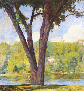 Art Prints of Elm Stems by Daniel Garber