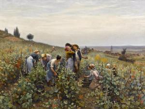 Art Prints of Grape Harvest by Daniel Ridgway Knight
