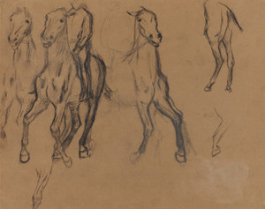 Art Prints of Study of Horses by Edgar Degas