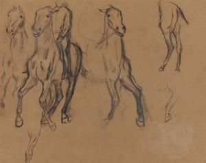 Art Prints of Study of Horses by Edgar Degas