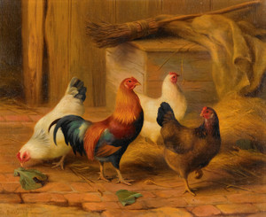 Art Prints of Chickens by Edgar Hunt