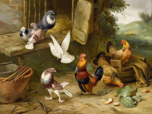 Art Prints of Chickens, Dove and Pigeons in a Farmyard by Edgar Hunt