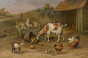 Art Prints of Goats, Chickens and Chicks in a Farmyard by Edgar Hunt