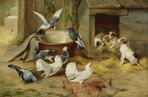 Art Prints of Puppies and Pigeons by Edgar Hunt