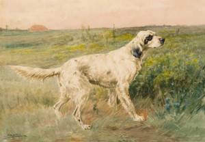 Art Prints of Hunting Setter Dog I by Edmund Henry Osthaus
