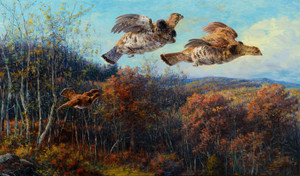 Art Prints of Grouse in Flight by Edmund Henry Osthaus
