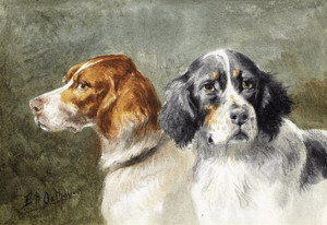 Art Prints of A Portrait of Two Setters by Edmund Henry Osthaus