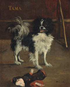 Art Prints of Tama, the Japanese Dog by Edouard Manet