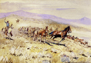 Art Prints of Bell Mare by Edward Borein