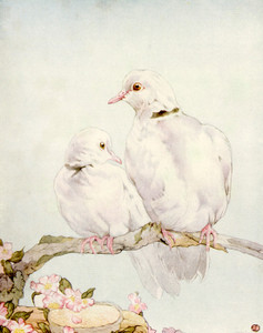 Art Prints of Doves by Edward Julius Detmold