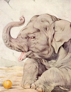 Art Prints of Elephants by Edward Julius Detmold