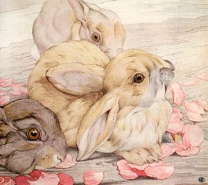 Art Prints of Rabbits by Edward Julius Detmold