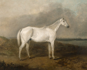 Art Prints of White Horse in a Landscape by Edward Robert Smythe