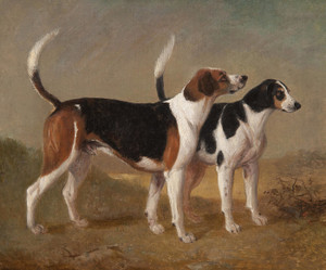 Art Prints of Suffolk Hounds by Edward Robert Smythe