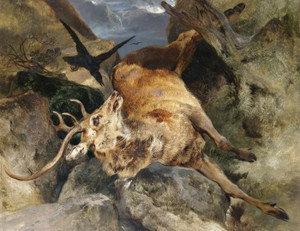 Art Prints of A Deer Fallen from a Precipice by Edwin Henry Landseer