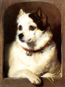 Art Prints of A Toy Terrier Looking out a Kennel by Edwin Henry Landseer