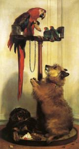 Art Prints of Macaw, Love Birds, Terrier and Spaniel Puppies by Edwin Henry Landseer
