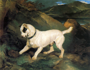 Art Prints of Portrait of a Terrier, Jocko with a Hedgehog by Edwin Henry Landseer