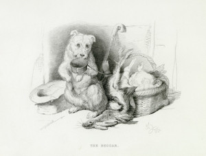Art Prints of The Beggar by Edwin Henry Landseer