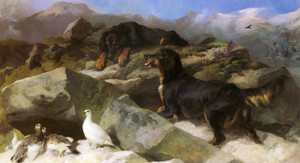 Art Prints of The Ptarmigan Hill by Edwin Henry Landseer