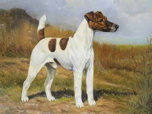 Art Prints of Champion Flornell Checkmate, Smooth Coated Fox Terrier by Edwin Megargee