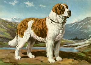 Art Prints of Saint Bernard by Edwin Megargee