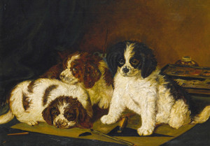 Art Prints of Three Spaniel Puppies, English School