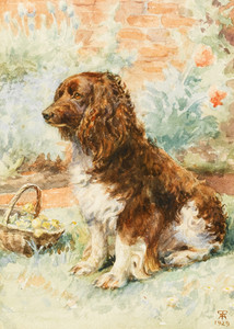 Spaniel in the Garden, English School