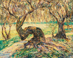 Art Prints of Indian River, Myakka Jungle, Florida by Ernest Lawson