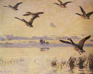 Art Prints of Canadian Geese taking Flight by Frank Weston Benson