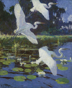 Art Prints of Herons and Lilies by Frank Weston Benson