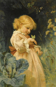 Art Prints of The Butterfly by Frederick Morgan