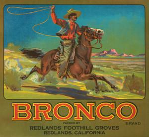 Art Prints of 054 Bronco Brand, Fruit Crate Labels