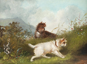 Art Prints of |Art Prints of Study of Two Terriers by George Armfield