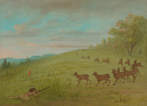 Art Prints of Antelope Shooting, Assinneboine by George Catlin
