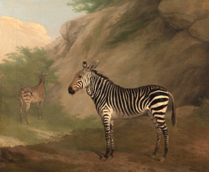 Art Prints of Zebra by George Morland