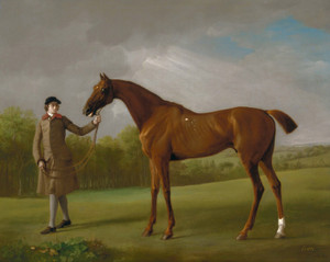 Art Prints of Lustre Held by a Groom by George Stubbs