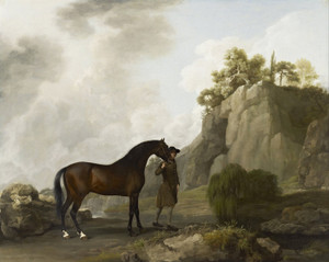 Art Prints of Marquess of Rockingham's Arabian Stallion by George Stubbs