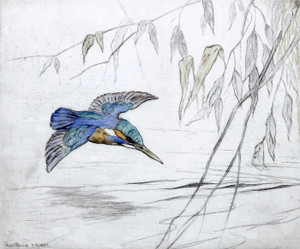 Art Prints of Kingfisher by George Vernon Stokes