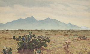 Art Prints of California Desert by Gunnar Widforss