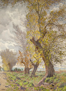 Art Prints of Cottonwood Trees by Gunnar Widforss