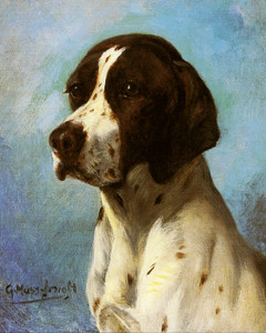 Art Prints of Pointer by Gustav Muss-Arnolt