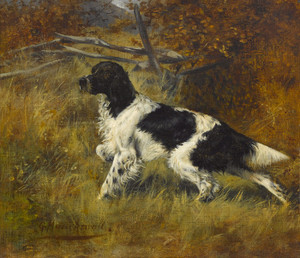 Art Prints of Setter in the Field by Gustav Muss-Arnolt