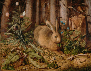 Art Prints of A Hare in the Forest by Hans Hoffmann