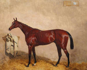 Art Prints of North Lincoln, a Bay Horse in a Stable by Harry Hall