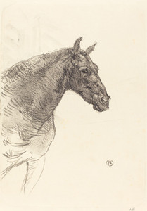 Art Prints of Old Horse, 1897 by Henri de Toulouse-Lautrec