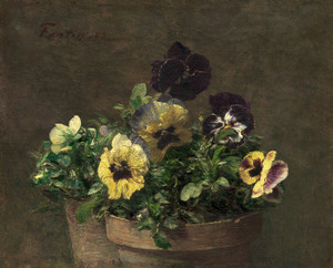 Art Prints of Potted Pansies by Henri Fantin-Latour