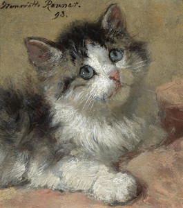Art Prints of An Inquisitive Kitten by Henriette Ronner Knip