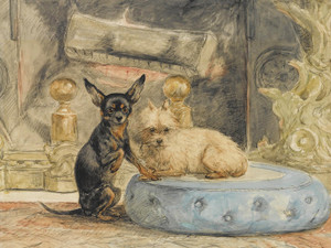 Art Prints of The Dogs of Marie Henriette, Queen of Belgium by Henriette Ronner Knip