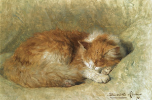 Art Prints of A Sleeping Cat by Henriette Ronner Knip